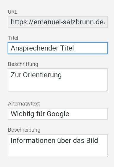 Bild Optimierung WordPress - ALTERNATIVTEXT, TITEL, BESCHREIBUNG & BESCHRIFTUNG