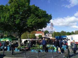 Erfurter Blumenmarkt 2019