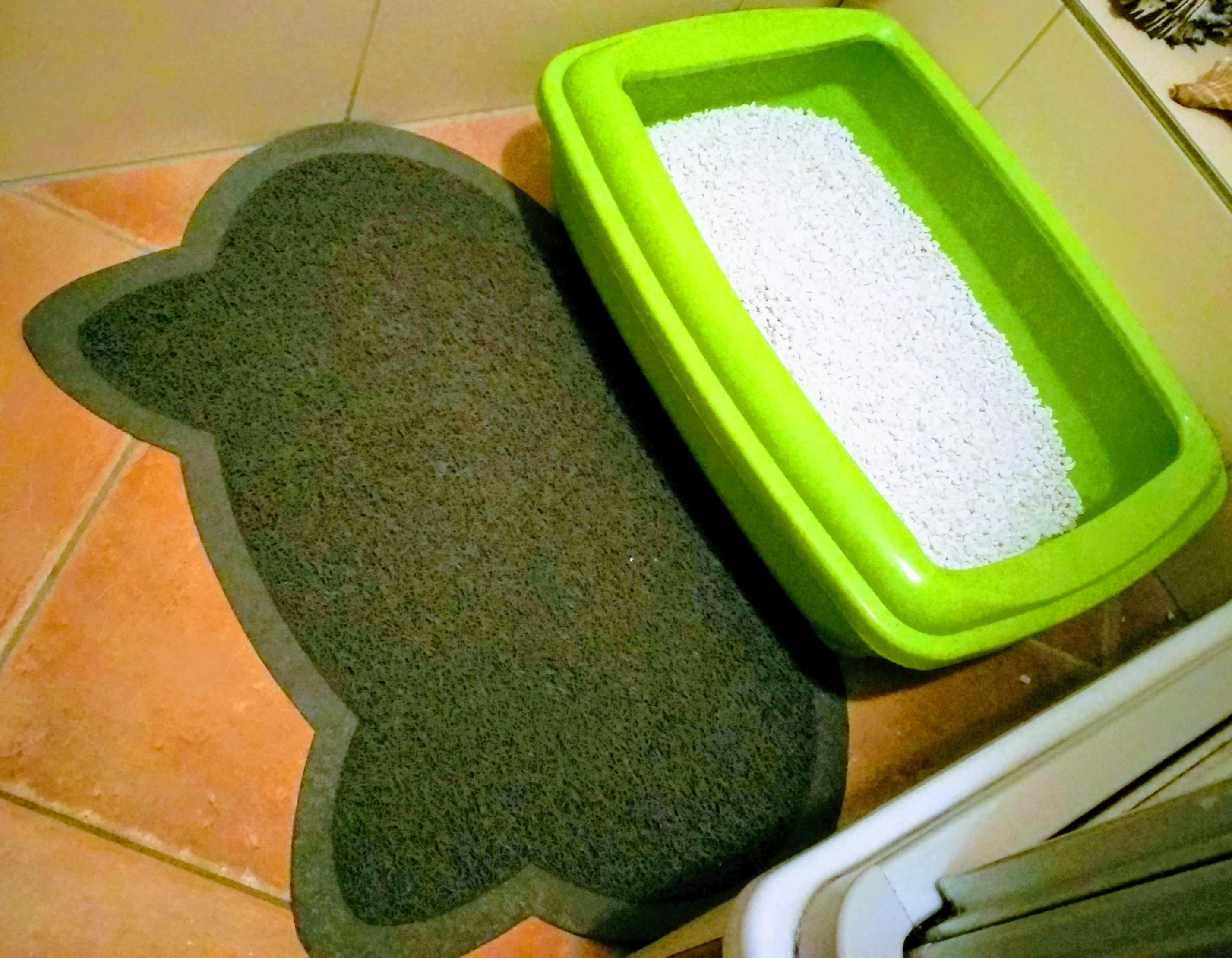 Gutes Weißes Katzenstreu grüne Katzentoilette Katzenmasse Streumatte Pfötchenabtreter