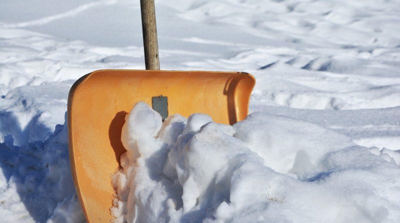 Schneeschaufel online kaufen
